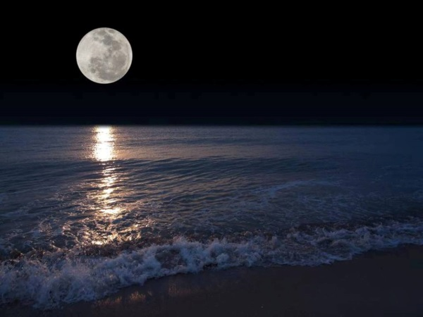 # Full Moon at by the Ocean(600x450)
